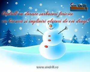 ondrill sarbatori 07 300x240 Sarbatori fericite si La multi ani 2013 !