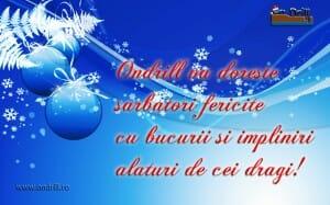 ondrill sarbatori 08 300x187 Sarbatori fericite si La multi ani 2013 !